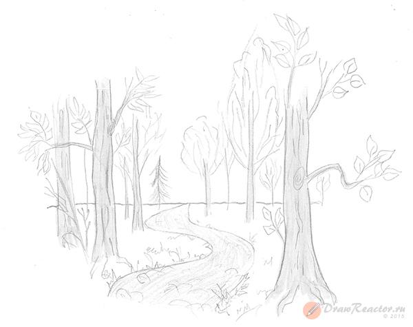 Как нарисовать лес. Шаг 5.