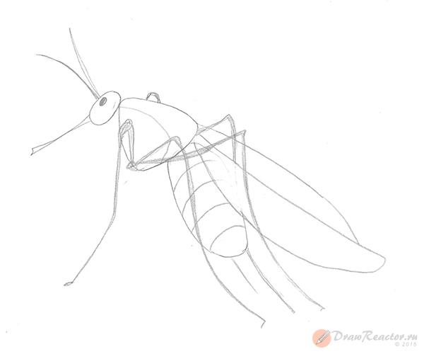 Как нарисовать комара. Шаг 4.