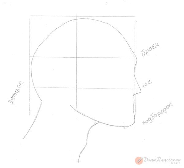 Рисуем лицо в профиль. Шаг 2.