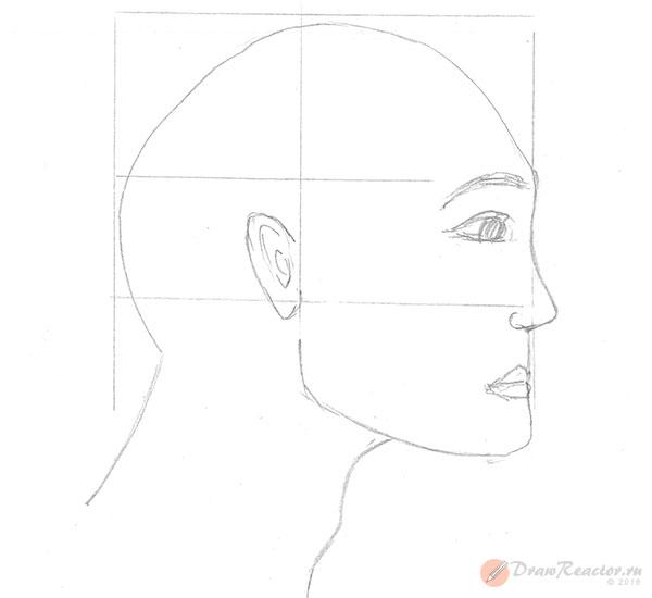 Рисуем лицо в профиль. Шаг 3.