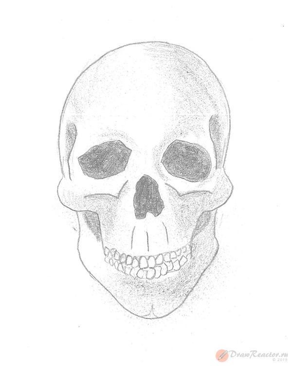 Как рисовать череп. Шаг 5.