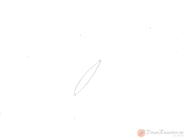 Как нарисовать бабочку. Шаг 1.