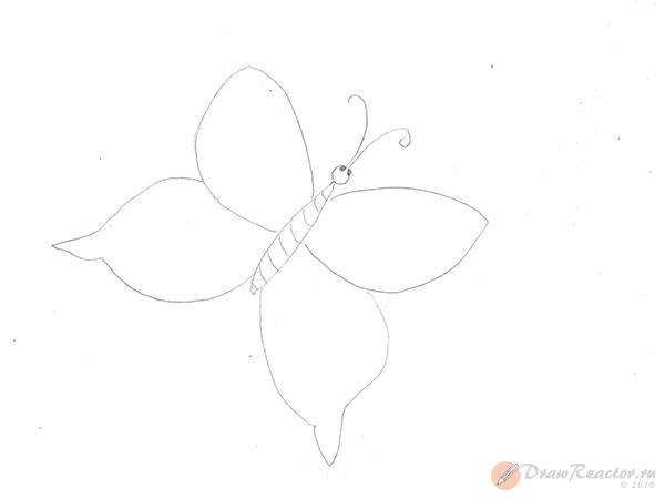 Как нарисовать бабочку. Шаг 3.
