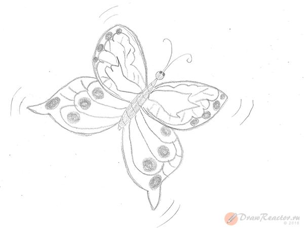 Как нарисовать бабочку. Шаг 4.