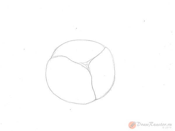 Как рисовать капусту. Шаг 2.