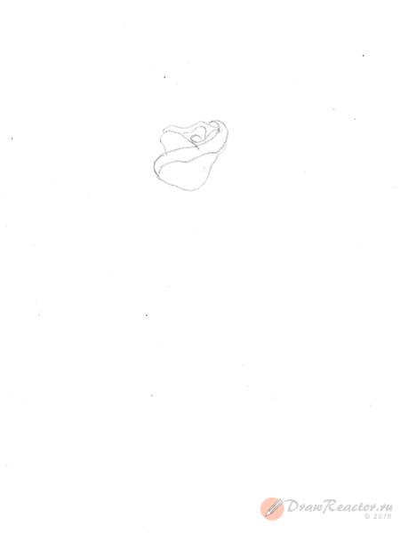 Как нарисовать розу. Шаг 2.