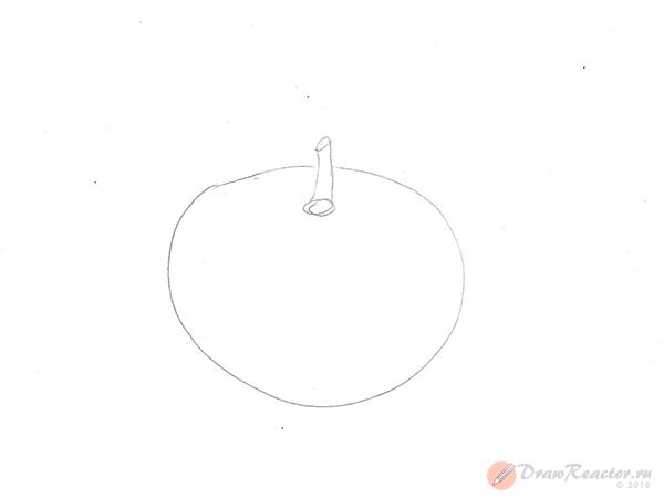 Как нарисовать помидор. Шаг 2.