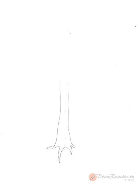 Как нарисовать дерево. Шаг 1.