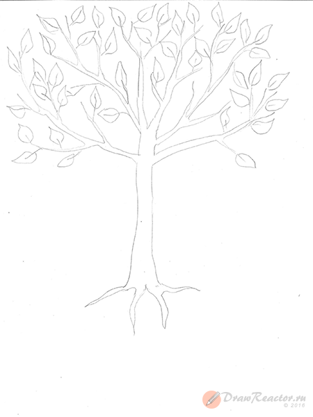 Как нарисовать дерево. Шаг 3.