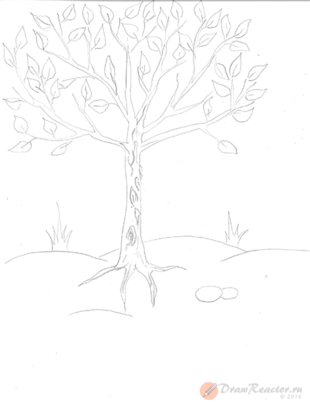 Как нарисовать дерево. Шаг 4.