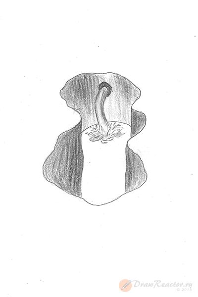 Как нарисовать 3d рисунок. Шаг 4.