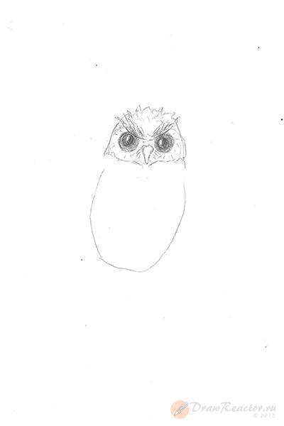 Рисунок совы. Шаг 2.