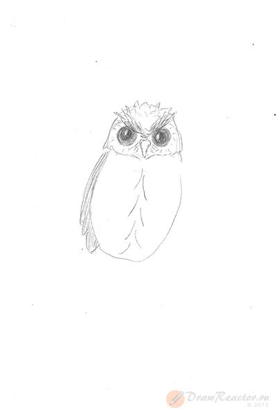 Рисунок совы. Шаг 3.