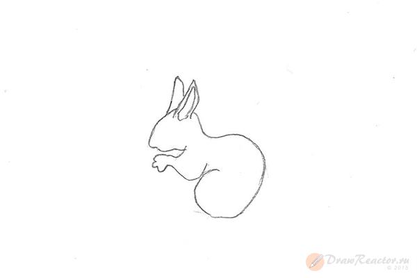 Как рисовать белку. Шаг 3.
