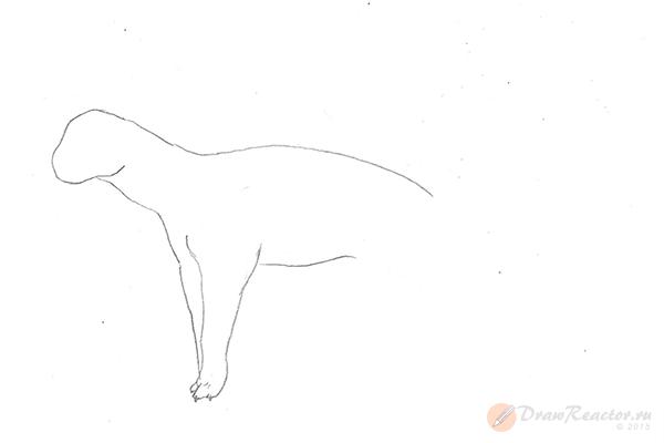 Рисунок тигра. Шаг 3.