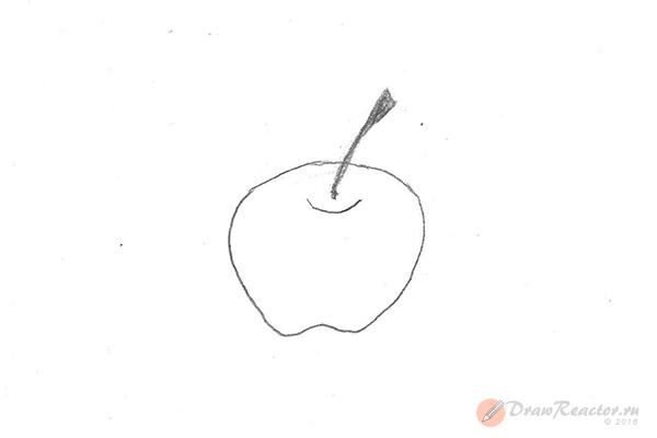 Рисунок яблока. Шаг 2.