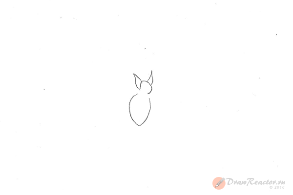 Рисунок летучей мыши. Шаг 2.