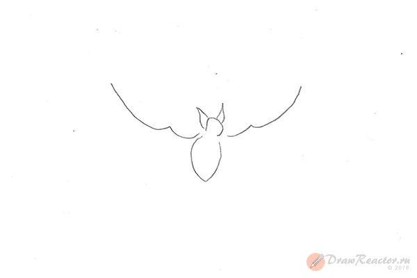 Рисунок летучей мыши. Шаг 3.