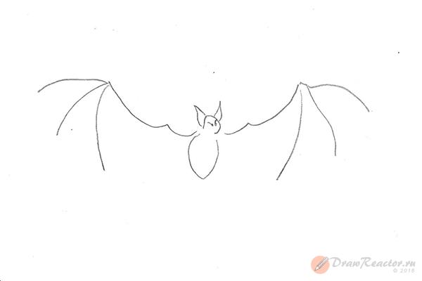 Рисунок летучей мыши. Шаг 4.