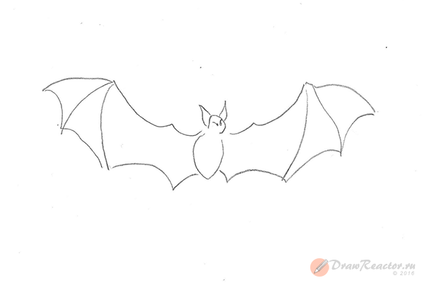 Рисунок летучей мыши. Шаг 5.