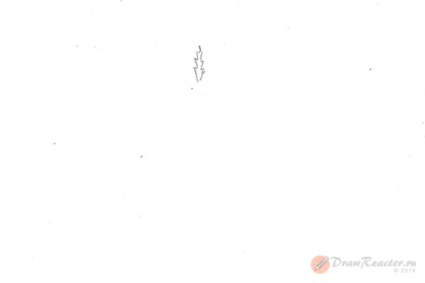 Рисунок елки. Шаг 1.