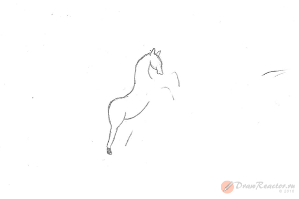 Как нарисовать лошадь на дыбах. Шаг 5.
