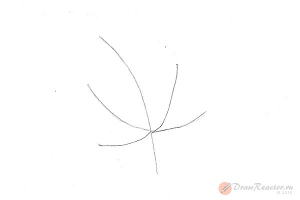 Как нарисовать кленовый лист. Шаг 1.