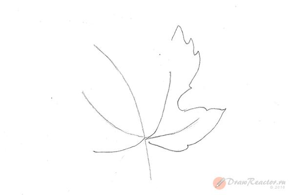 Как нарисовать кленовый лист. Шаг 2.