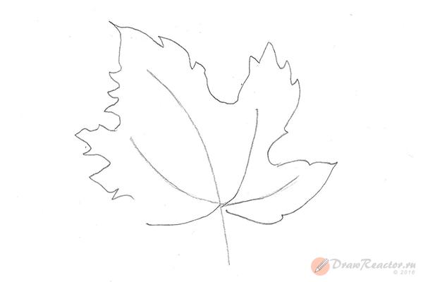 Как нарисовать кленовый лист. Шаг 3.