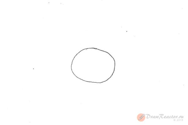 Как рисовать Нюшу из Смешариков. Шаг 1.