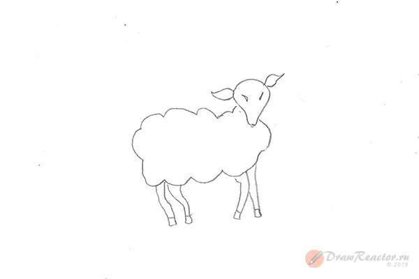 Как нарисовать барана. Шаг 4.