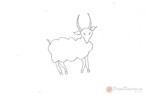 Как нарисовать барана. Шаг 5.