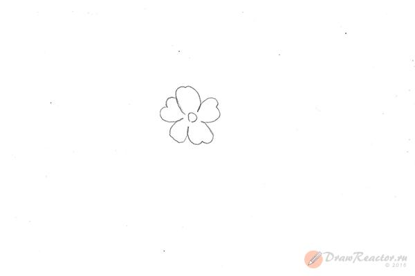 Рисунок сакуры. Шаг 1.