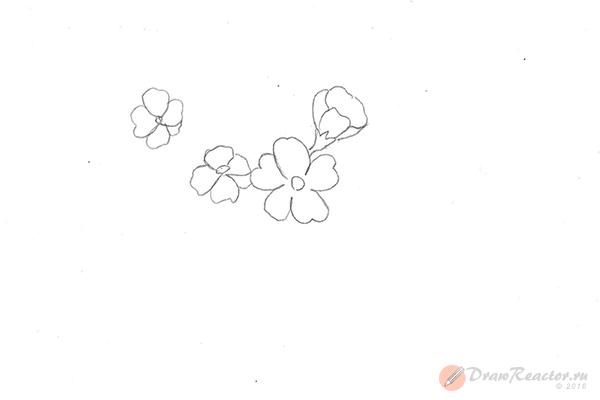 Рисунок сакуры. Шаг 2.