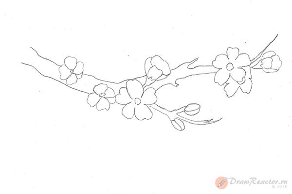 Рисунок сакуры. Шаг 4.